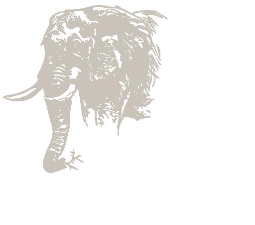 Chase Africa Safaris – Botswana mobile safaris