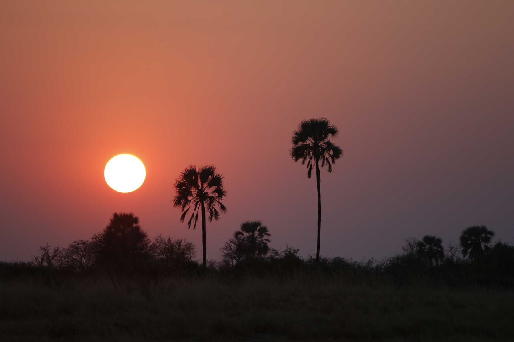Budget mobile safaris with Chase Africa Safaris