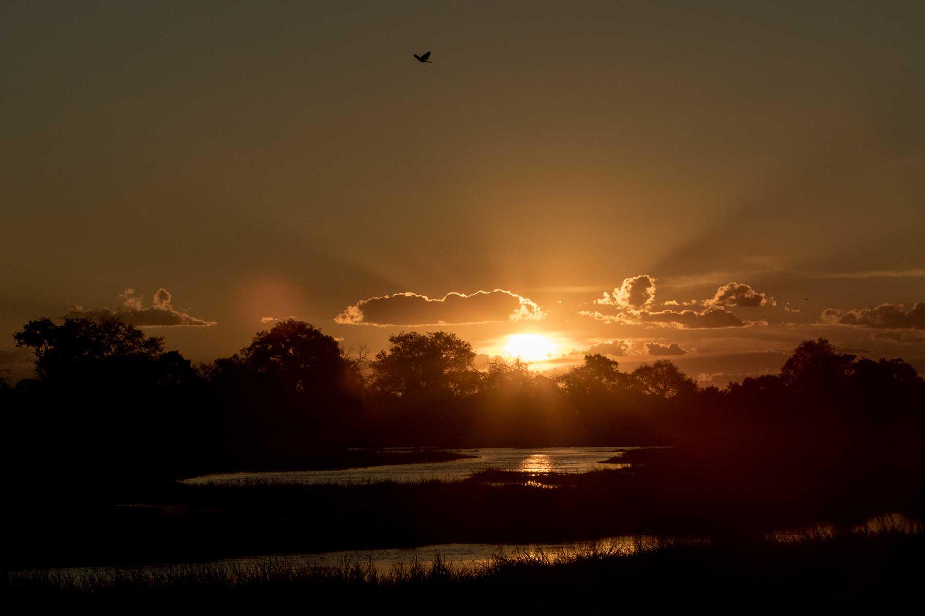 Botswana sunset Chase Africa Safaris